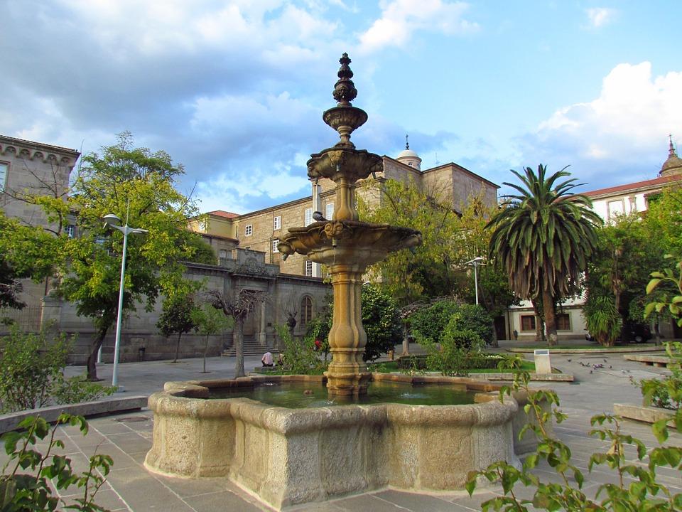 Control de plagas en Ourense